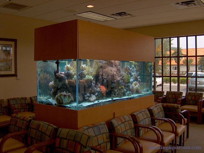 odanın ortasında büyük bekleme salonu tipi akvaryum