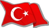 bayrak ikonu ile ilgili görsel sonucu