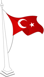 TC FLAG ICON TRANSPARENT