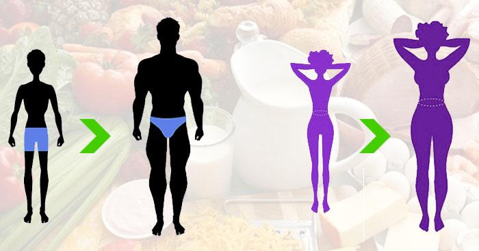 Kilo almak istiyorum | Zayıflık Sorunu ve Bazal metabolik hız